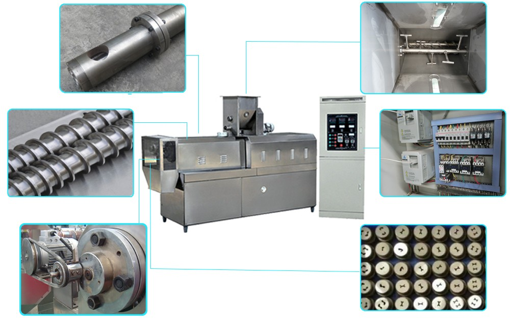 Twin Screw Food Extruder Machine process