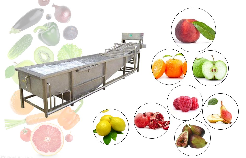 FRUIT AND VEGETABLE WASHING MACHINE FOR SALES