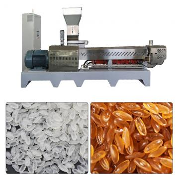 Large Capacity 500kg/h Fortified Rice Kernels (Frk) Extruder Machine