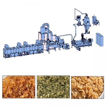 Nutritional Artificial Rice Processing Line