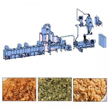 NutritionalArtificialRiceProcessing Line