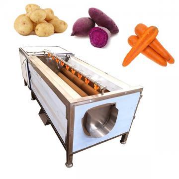 Vegetable Brush Washer Machine