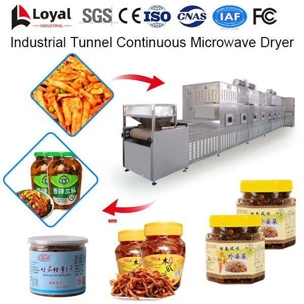 Industrial Tunnel Continuous Microwave Dryer #4 image