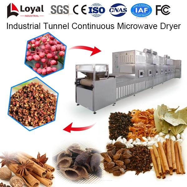 Industrial Tunnel Continuous Microwave Dryer #5 image