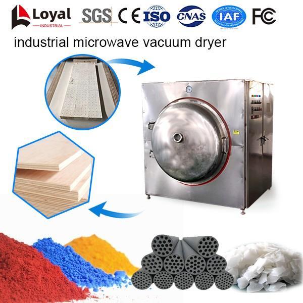 Industrial Microwave Vacuum Dryer #5 image