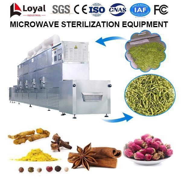 Microwave Sterilization Equipment #2 image