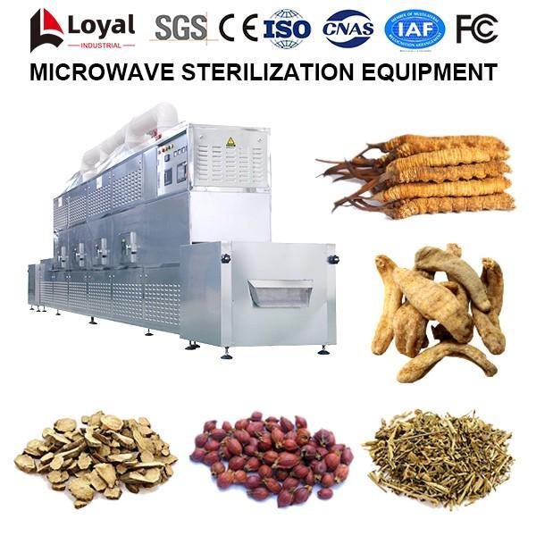Microwave Sterilization Equipment #4 image