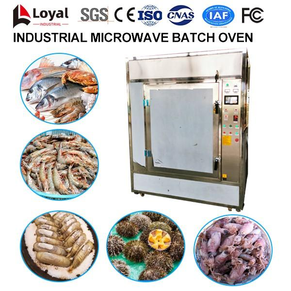Industrial Microwave Batch Oven #3 image