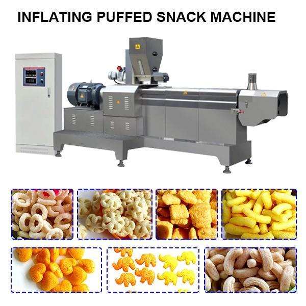 Twin Screw Food Extruder Machine #1 image