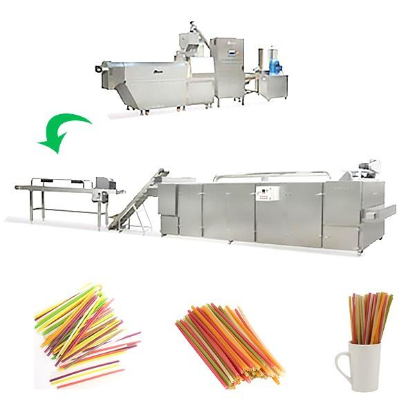 Biodegradable Rice Drinking Straw Processing Line #2 image